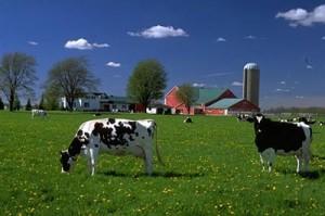 Farm-Taxes